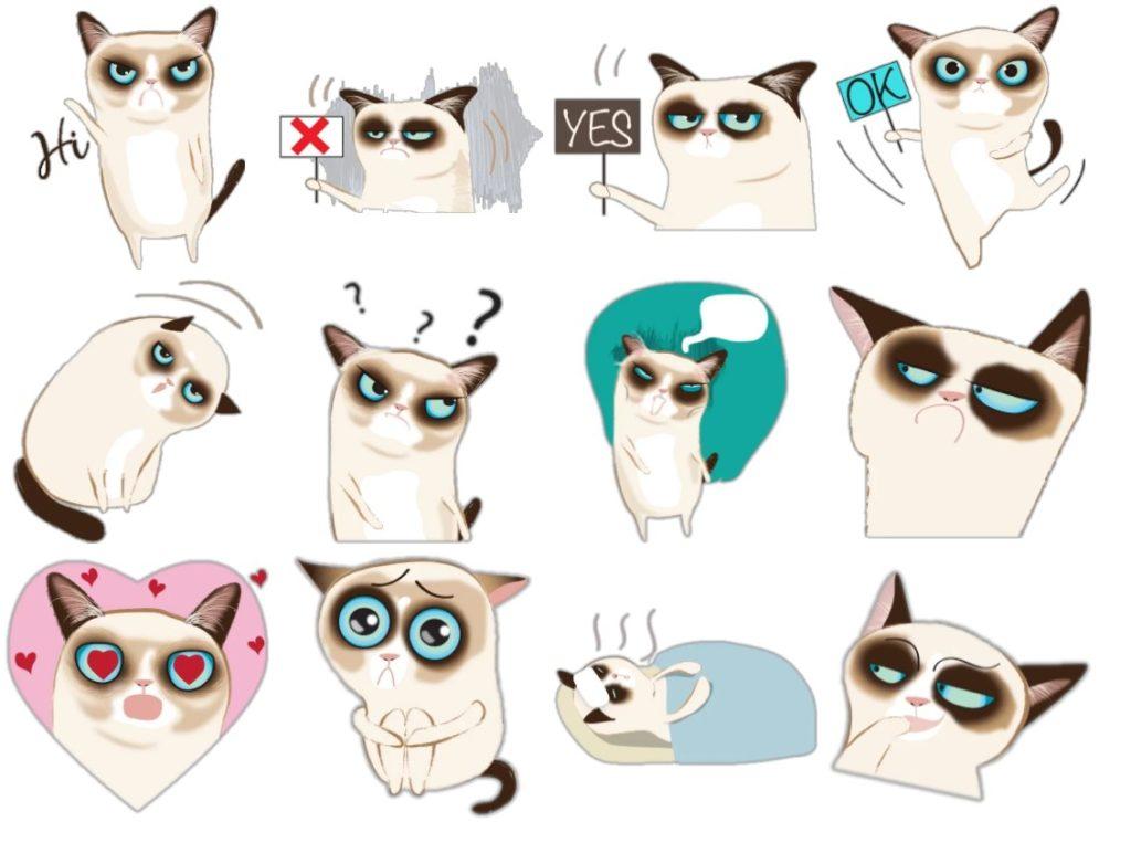 Стикеры «Сиамский котик» для Telegram