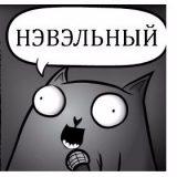 Кот стендапер